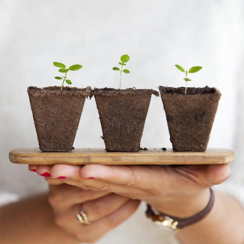 growing asset blog